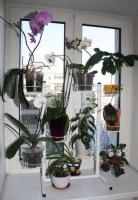 Подставка для цветов Флора