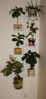 Подставка для цветов Настенная