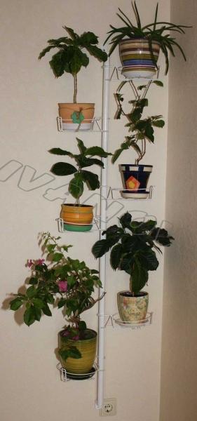 Купить подставку настенную для цветов